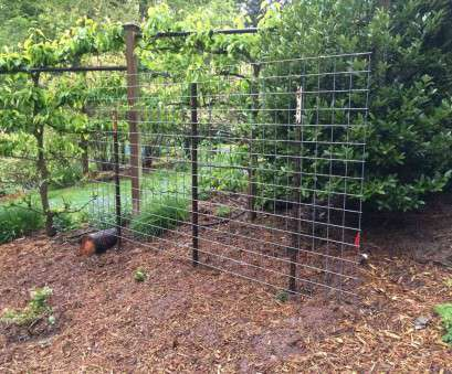 pvc coated steel mesh fencing wire Fencing Uk green, coated steel wire mesh fencing cm garden rhamazoncouk fence slats creativities true Pvc Coated Steel Mesh Fencing Wire Best Fencing Uk Green, Coated Steel Wire Mesh Fencing Cm Garden Rhamazoncouk Fence Slats Creativities True Solutions