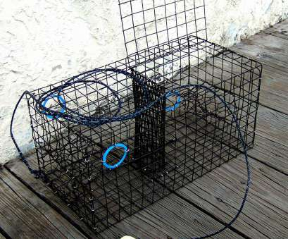 pvc coated wire mesh amazon Amazon.com : Maryland Blue crab, trap,, coated wire mesh, heavy duty : Sports & Outdoors Pvc Coated Wire Mesh Amazon Cleaver Amazon.Com : Maryland Blue Crab, Trap,, Coated Wire Mesh, Heavy Duty : Sports & Outdoors Galleries