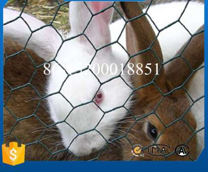 pvc coated wire mesh for cages China, Coated Iron Wire Netting, Rabbit Cage Photos Pvc Coated Wire Mesh, Cages Best China, Coated Iron Wire Netting, Rabbit Cage Photos Collections
