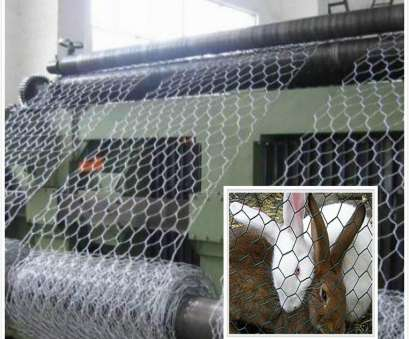 pvc coated hex wire mesh China, Coated Hexagonal Wire Netting, China Hexagonal Wire Mesh, Hexagonal Wire Netting Pvc Coated, Wire Mesh Cleaver China, Coated Hexagonal Wire Netting, China Hexagonal Wire Mesh, Hexagonal Wire Netting Ideas