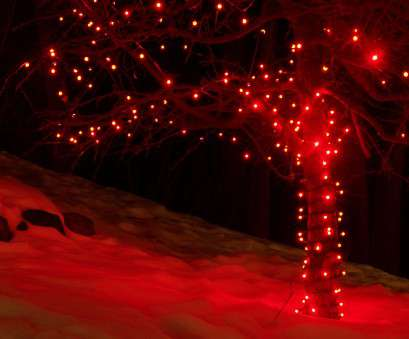 red led christmas lights with white wire 5mm Wide Angle, Christmas Lights, Commercial, Lights Red, Christmas Lights With White Wire Practical 5Mm Wide Angle, Christmas Lights, Commercial, Lights Solutions