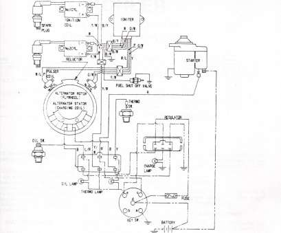 Robertshaw 9520 Thermostat Wiring Diagram Top Robert Shaw Thermostat