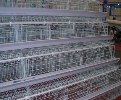 stainless steel wire mesh cages China Stainless Steel Galvanized Wire Mesh Cage Layer Chicken Coop 11 Most Stainless Steel Wire Mesh Cages Pictures