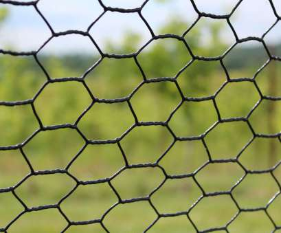 Stainless Steel, Wire Mesh Fantastic Hexagonal Wire Mesh Netting/Chicken Mesh: Assortments Available 1. Hot-Dipped Galvanized After Weaving 2. Hot-Dipped Galvanized Before Weaving 3 Solutions