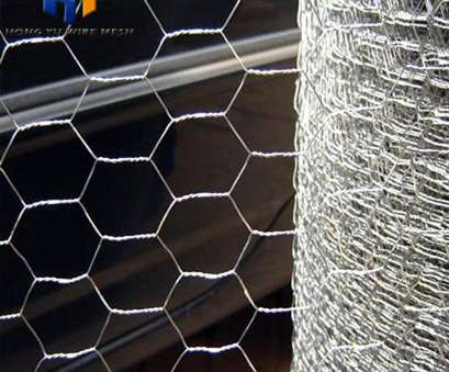 stainless steel wire mesh in kenya Chicken Wire Mesh Kenya, Chicken Wire Mesh Kenya Suppliers, Manufacturers at Alibaba.com Stainless Steel Wire Mesh In Kenya Perfect Chicken Wire Mesh Kenya, Chicken Wire Mesh Kenya Suppliers, Manufacturers At Alibaba.Com Collections