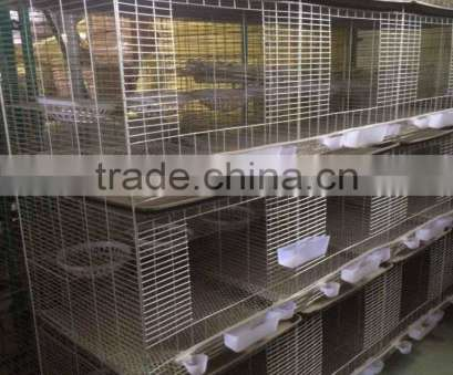 stainless steel wire mesh in qatar Trade Assurance Electro Galvanized Silver White Pigeon Raising Cage, Qatar Stainless Steel Wire Mesh In Qatar Practical Trade Assurance Electro Galvanized Silver White Pigeon Raising Cage, Qatar Ideas