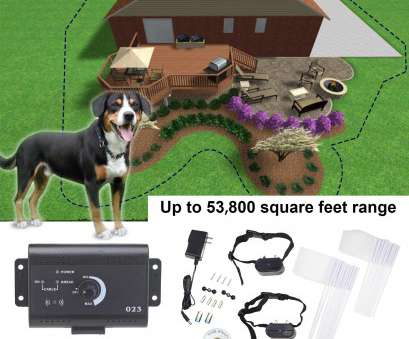 stubborn no wire dog electric fence Banyan Underground Electric, Fence System Waterproof 2 Shock Collars, 2 Dogs, Walmart.com Stubborn No Wire, Electric Fence Professional Banyan Underground Electric, Fence System Waterproof 2 Shock Collars, 2 Dogs, Walmart.Com Ideas