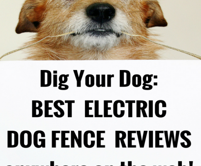 stubborn no wire dog electric fence The Best Electric, Fence Reviews Anywhere!,, Your Dog Stubborn No Wire, Electric Fence Top The Best Electric, Fence Reviews Anywhere!,, Your Dog Solutions