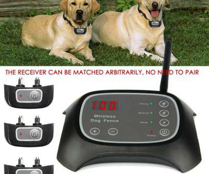 stubborn no wire dog electric fence Wireless, Dog Fence Containment System Waterproof Electric Transmitter Collar 1 of 9FREE Shipping Stubborn No Wire, Electric Fence Creative Wireless, Dog Fence Containment System Waterproof Electric Transmitter Collar 1 Of 9FREE Shipping Pictures