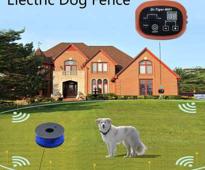 underground dog fence wire walmart 40 Awesome Photos Of Wireless, Fence with 2 Collars, Best Fence Gallery Inspiration, You Underground, Fence Wire Walmart Simple 40 Awesome Photos Of Wireless, Fence With 2 Collars, Best Fence Gallery Inspiration, You Pictures
