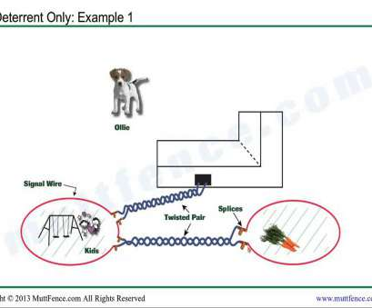 underground dog fence wiring diagram In-Ground, Fence Deterrent Installation Underground, Fence Wiring Diagram Creative In-Ground, Fence Deterrent Installation Photos