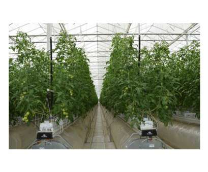 welded wire mesh panels portland oregon Example of, indoor commercial farming crop we provide products for Welded Wire Mesh Panels Portland Oregon Top Example Of, Indoor Commercial Farming Crop We Provide Products For Photos