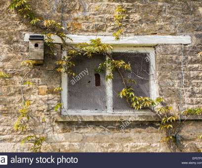 window glass with wire mesh Old fashioned window with wire mesh instead of glass Stock Photo Window Glass With Wire Mesh Fantastic Old Fashioned Window With Wire Mesh Instead Of Glass Stock Photo Collections