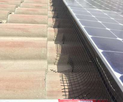 wire mesh around solar panels Pigeons under solar panels? We, the experts! 5 year exclusion guarantee! Wire Mesh Around Solar Panels Cleaver Pigeons Under Solar Panels? We, The Experts! 5 Year Exclusion Guarantee! Collections