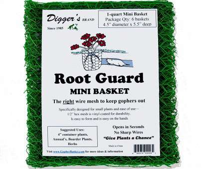 wire mesh baskets small Amazon.com : 24 Quantity Rodent/gopher Plant, Root Guard Mini Size Baskets 4