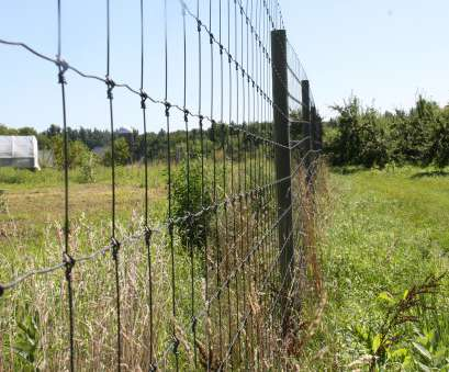 wire mesh deer fence Deer,, England Tree Fruit Management Guide 19 Fantastic Wire Mesh Deer Fence Images