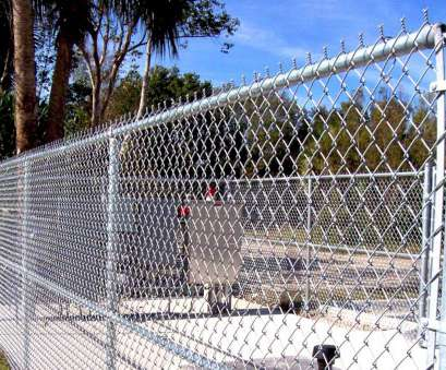wire mesh fence dimensions Fence Olympus Digital Camera Wire Netting Fence Imposing X Fence throughout size 1134 X 785 Wire Mesh Fence Dimensions Nice Fence Olympus Digital Camera Wire Netting Fence Imposing X Fence Throughout Size 1134 X 785 Collections