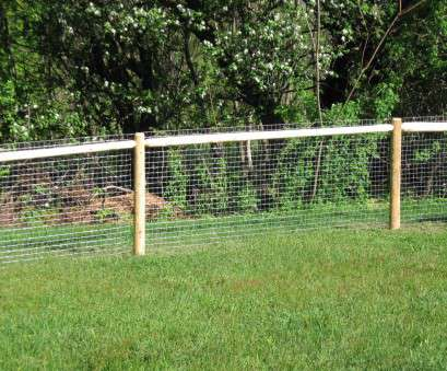 8 New Wire Mesh Fence, Dogs Galleries