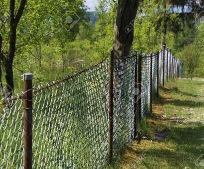 wire mesh fence for garden Mesh fence / Metal mesh as a garden fence Stock Photo, 78810277 Wire Mesh Fence, Garden Cleaver Mesh Fence / Metal Mesh As A Garden Fence Stock Photo, 78810277 Solutions