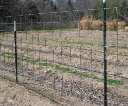 wire mesh fence ideas Cordial J Fencing, Wire Fence Panels, Wire Fence Panels Wire Mesh Fence Ideas Professional Cordial J Fencing, Wire Fence Panels, Wire Fence Panels Collections