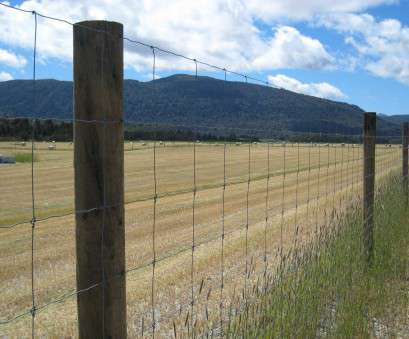 Wire Mesh Fence Nz Professional Wire, Netting, Goldpine Ideas