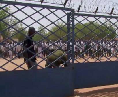 wire mesh fence price in nigeria Nigeria sets up probe into girls' school attack, abductions, WTOP Wire Mesh Fence Price In Nigeria Nice Nigeria Sets Up Probe Into Girls' School Attack, Abductions, WTOP Photos