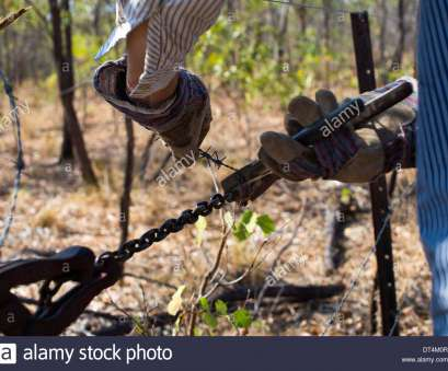 wire mesh fence strainer Man using fencing wire strainer, pliers on barbed wire, Stock Image Wire Mesh Fence Strainer Best Man Using Fencing Wire Strainer, Pliers On Barbed Wire, Stock Image Images