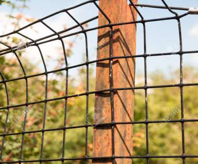 wire mesh fence uk rusted metal iron, holding a wire mesh on protected field; England; UK Stock Wire Mesh Fence Uk Professional Rusted Metal Iron, Holding A Wire Mesh On Protected Field; England; UK Stock Photos