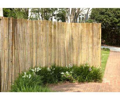 wire mesh fencing homebase Pergola 8 Bamboo Fence Panels Auckland Bamboo Fence Panels with measurements 1054 X 836 Wire Mesh Fencing Homebase Practical Pergola 8 Bamboo Fence Panels Auckland Bamboo Fence Panels With Measurements 1054 X 836 Ideas