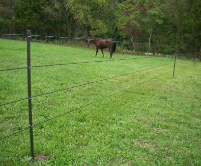 wire mesh fencing for horses Horses Don't, Electric Fences, Fact or Myth?, PasturePro Wire Mesh Fencing, Horses Professional Horses Don'T, Electric Fences, Fact Or Myth?, PasturePro Ideas