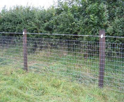 wire mesh fencing for horses JPG (2158733 bytes) IMG_0312.JPG (2858611 bytes) Stablemesh Horse fence Wire Mesh Fencing, Horses Brilliant JPG (2158733 Bytes) IMG_0312.JPG (2858611 Bytes) Stablemesh Horse Fence Collections