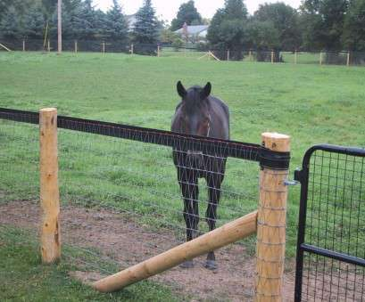 wire mesh fencing for horses Safe Effective Fencing Options, Horses Horse Journals regarding sizing 1200 X 900 Wire Mesh Fencing, Horses Simple Safe Effective Fencing Options, Horses Horse Journals Regarding Sizing 1200 X 900 Solutions