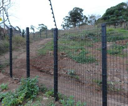 wire mesh fencing in durban Home -, Fencing Wire Mesh Fencing In Durban New Home -, Fencing Photos