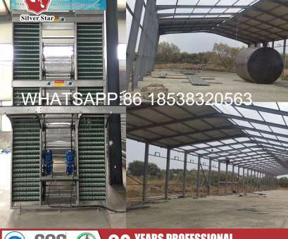 wire mesh fencing kenya China Best Quality Wire Mesh Cage, Chicken Layer Farm in Kenya, China Welded Wire Mesh Cage, Wire Mesh Cage Wire Mesh Fencing Kenya Nice China Best Quality Wire Mesh Cage, Chicken Layer Farm In Kenya, China Welded Wire Mesh Cage, Wire Mesh Cage Pictures