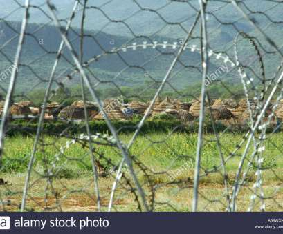 wire mesh fencing kenya View of a Sudanese refugee camp through barbed wire fence, Lokichoggio, Kenya, Stock Wire Mesh Fencing Kenya Popular View Of A Sudanese Refugee Camp Through Barbed Wire Fence, Lokichoggio, Kenya, Stock Collections