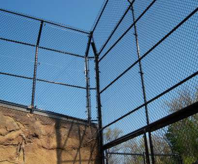 wire mesh fencing newcastle Lion exhibit, Chain Link Fence, Pinterest, Fences Wire Mesh Fencing Newcastle Brilliant Lion Exhibit, Chain Link Fence, Pinterest, Fences Galleries