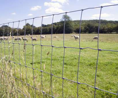 wire mesh fencing nottingham Stock Fencing, Corden Perimeter Systems 17 Perfect Wire Mesh Fencing Nottingham Photos