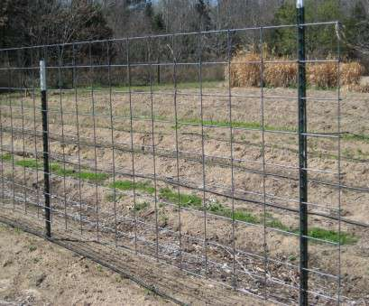wire mesh fencing for sale in johannesburg Popular Welded Wire Fence Panels, Good Christian Decors : Welded Wire Mesh Fencing, Sale In Johannesburg Most Popular Welded Wire Fence Panels, Good Christian Decors : Welded Solutions