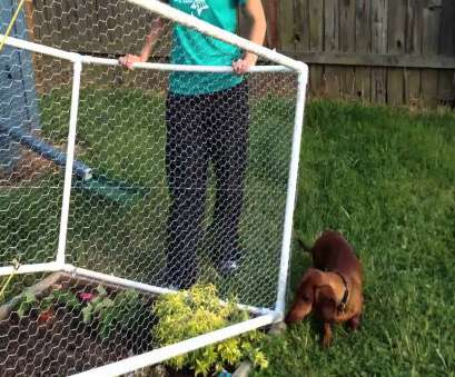 Wire Mesh, Garden Fence Cleaver Garden Fence Collections