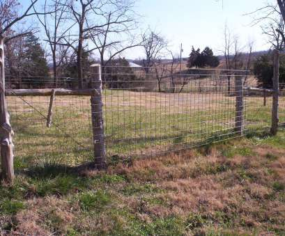 wire mesh goat fence Don't keep grown bucks on both sides of a fence. They will fight through, fence, destroy, It is OK to keep several grown bucks together in, same Wire Mesh Goat Fence Fantastic Don'T Keep Grown Bucks On Both Sides Of A Fence. They Will Fight Through, Fence, Destroy, It Is OK To Keep Several Grown Bucks Together In, Same Pictures