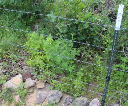 wire mesh goat fence Fencing, Boer Goats, Meat Goats, Critter Ridge Wire Mesh Goat Fence Nice Fencing, Boer Goats, Meat Goats, Critter Ridge Galleries