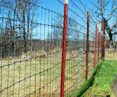 wire mesh goat fence Goat Fencing that Works -, Hill Homestead Wire Mesh Goat Fence New Goat Fencing That Works -, Hill Homestead Solutions