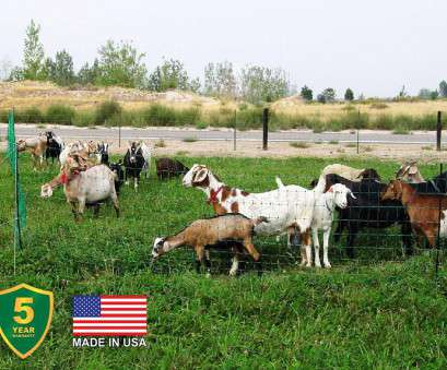 wire mesh goat fence Poultry, Goat Electric Mesh, Fence Powerfields, Wire, Tape Wire Mesh Goat Fence Brilliant Poultry, Goat Electric Mesh, Fence Powerfields, Wire, Tape Solutions