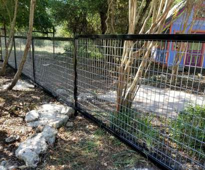 wire mesh horse panels Pictures of Cattle Panel Fencing or Livestock Fencing, Austin, TX Wire Mesh Horse Panels Practical Pictures Of Cattle Panel Fencing Or Livestock Fencing, Austin, TX Solutions