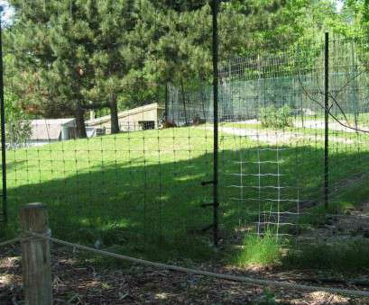 wire mesh on vinyl fence Fencing fence vinyl coated welded wire mesh rhbackyardlandscapingfenceinfo h pinterest rhpinterestcom, make a framed in Wire Mesh On Vinyl Fence Most Fencing Fence Vinyl Coated Welded Wire Mesh Rhbackyardlandscapingfenceinfo H Pinterest Rhpinterestcom, Make A Framed In Images