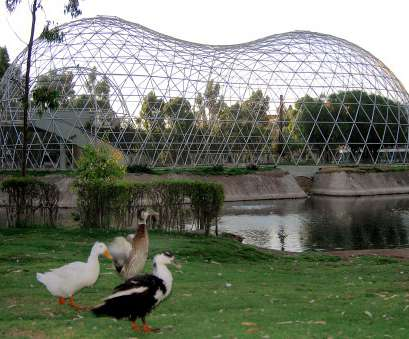 wire mesh panels canberra Aviary Wire Mesh Products, Custom Made Bird Aviaries Wire Mesh Panels Canberra New Aviary Wire Mesh Products, Custom Made Bird Aviaries Images