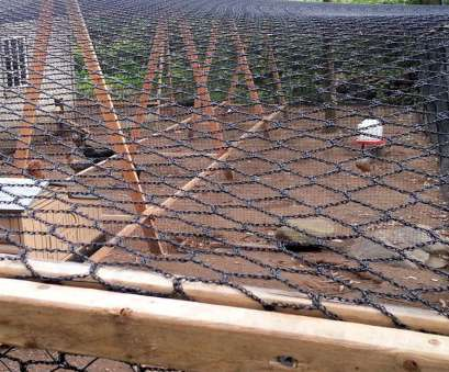 wire mesh panels chicken run cool info on, to build a super cool chicken run. Predator proof, roomy. From, pet chicken