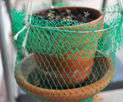 wire mesh planting baskets a while back, in another post about, garden, patio, I quickly described creating a hanging basket, a flowerpot by reusing a mesh, from the Wire Mesh Planting Baskets Brilliant A While Back, In Another Post About, Garden, Patio, I Quickly Described Creating A Hanging Basket, A Flowerpot By Reusing A Mesh, From The Pictures