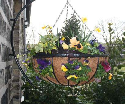 wire mesh planting baskets How to Plant Hanging Baskets, Garden Features Ideas Wire Mesh Planting Baskets Cleaver How To Plant Hanging Baskets, Garden Features Ideas Images
