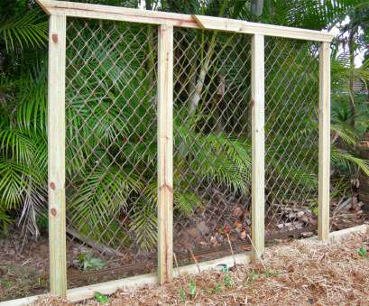 wire mesh security screen Upcycled security mesh makes a pretty cool garden trellis, it's strong too! Wire Mesh Security Screen Fantastic Upcycled Security Mesh Makes A Pretty Cool Garden Trellis, It'S Strong Too! Images